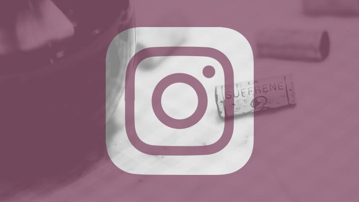 SFFRN_Site_Socials_Instagram