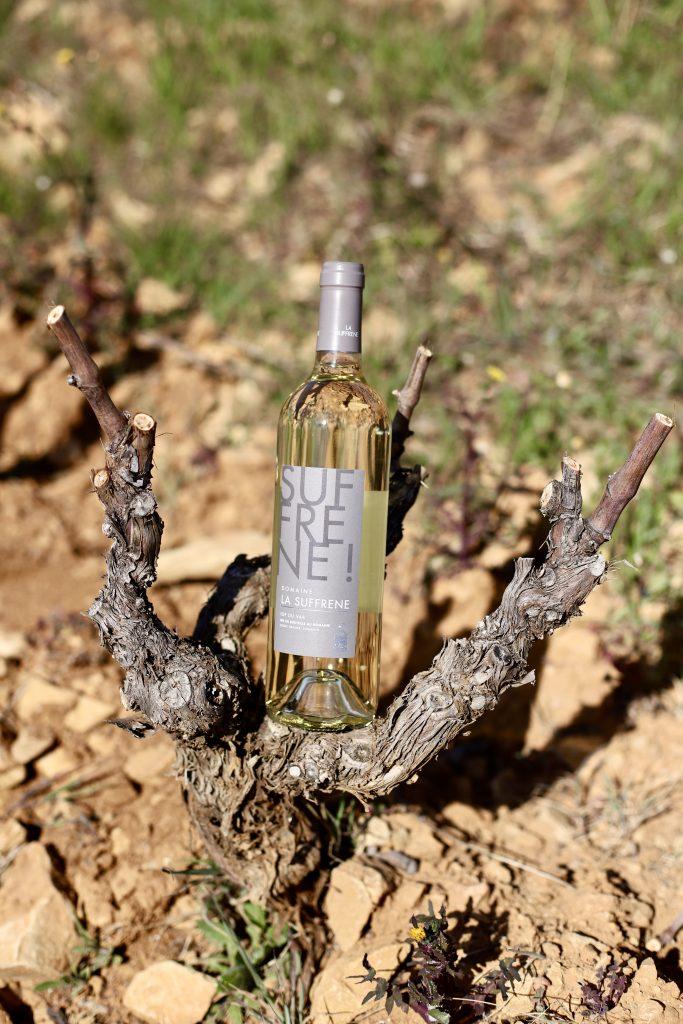 Vin blanc IGP du Var du Domaine la Suffrène